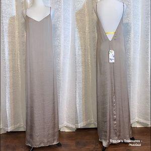 Jolie Maxi Dress in Silver Dollar Silky Satin